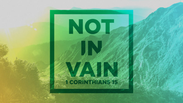 Not In Vain